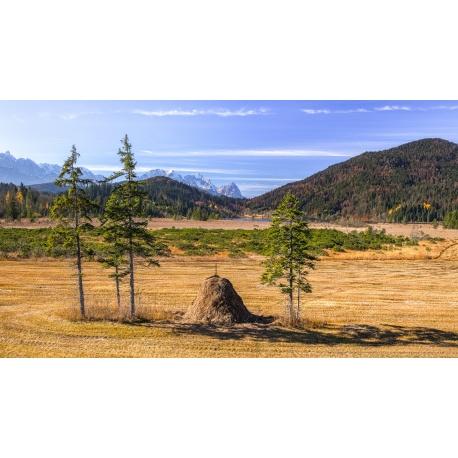 Barmsee - Streudrische Feuchtwiese Leinwandbild