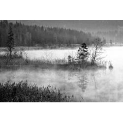 Barmsee - Nebel schwaz weiß Wandbild Leinwand