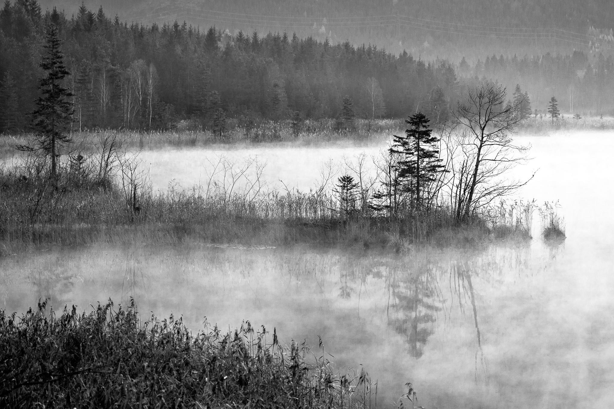 Barmsee, See, Nebel, Nebelschwaden, Morgendunst