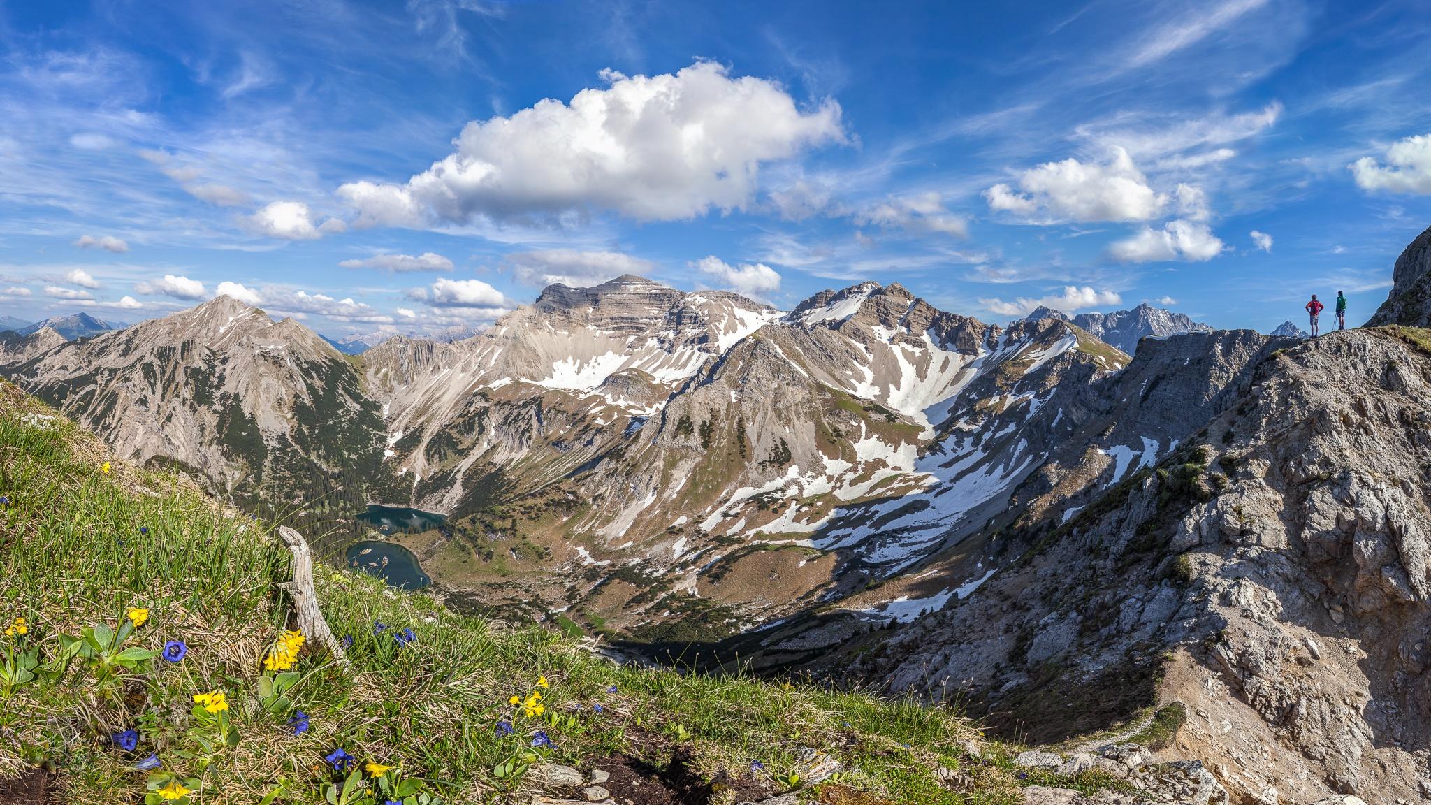 Enzian, Soiernsee, Soiernspitze, Wanderung, Schöttelkarspitze