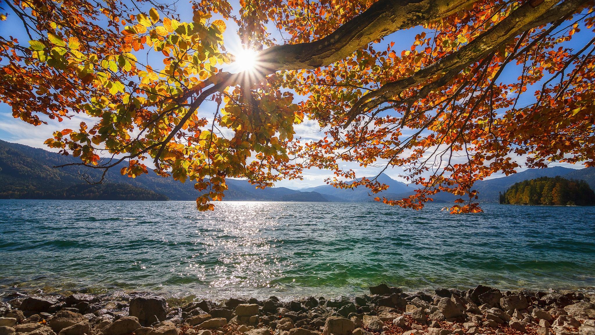 Walchensee, goldener, Herbst