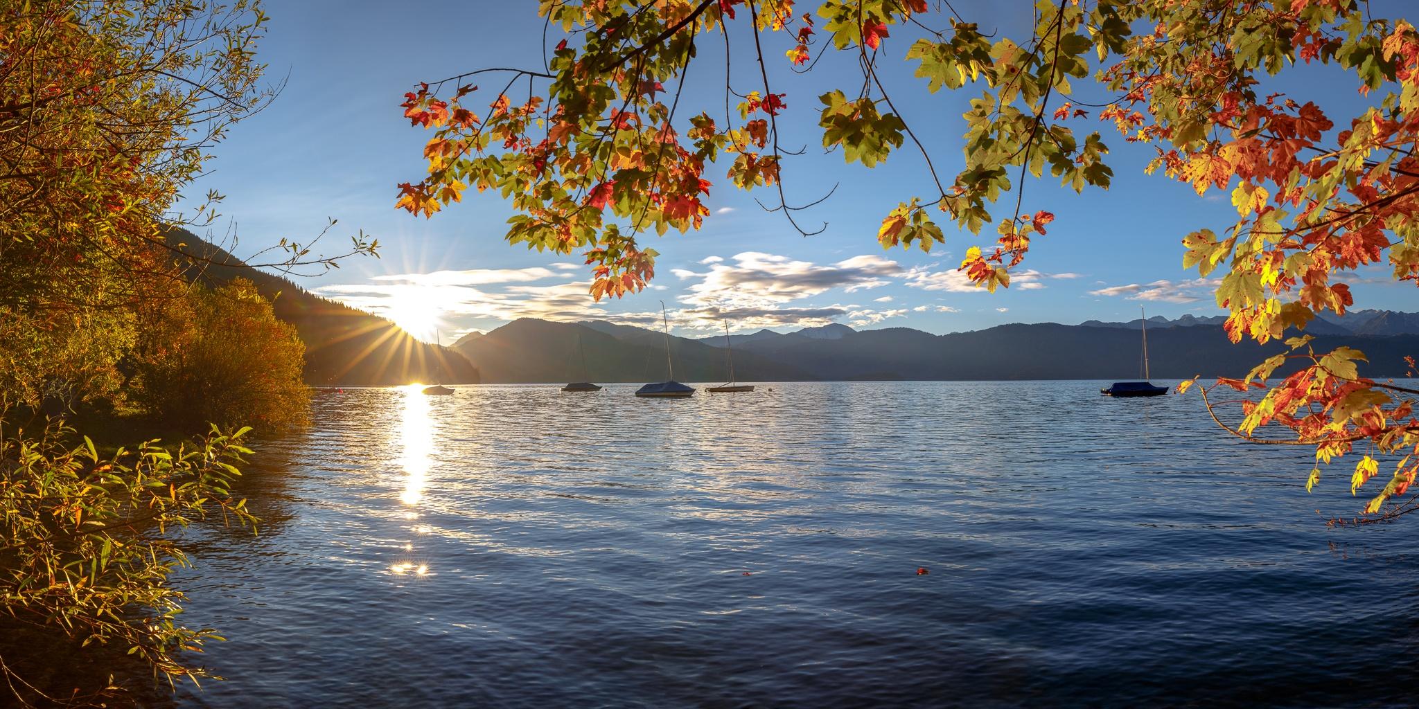 Walchensee, Herbst, Ahorn