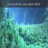 Ausschnitt unterwasser