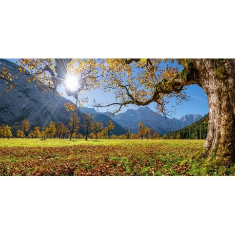 Grosser Ahornboden im Herbst