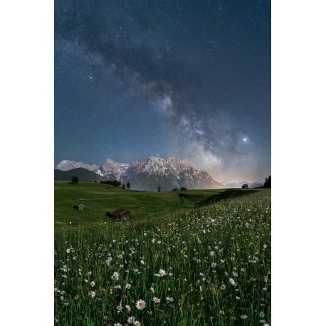 Sternenhimmel in den Bergen mit Margeriten