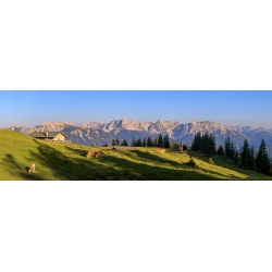 Blick ins Karwendel - Almwiese Panorama Alpen