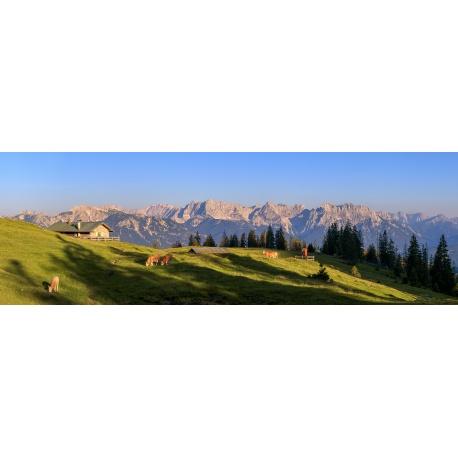 Blick ins Karwendel - Almwiese