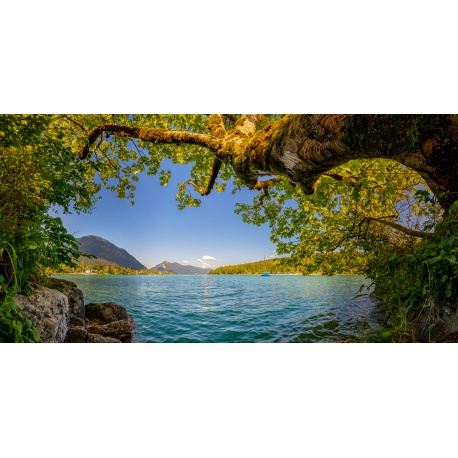 Walchensee Sommer