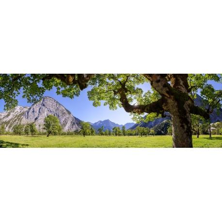 Großer Ahornboden- Engalm - Sommer