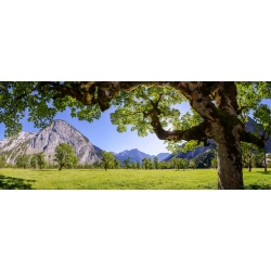 Großer Ahornboden - Karwendel